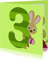 3 jaar verjaardag konijn