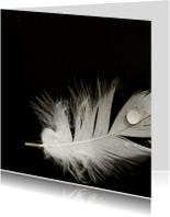 Rouwkaarten - 4K Wit veertje op zwart water