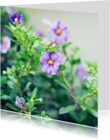afscheid bloemetjes paars