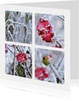 Ansichtkaart winter bloemen