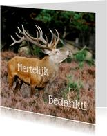 Bedankkaart - hert elijk bedankt - OT