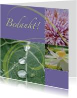 Bedankkaart met bloemen en dauwdruppels