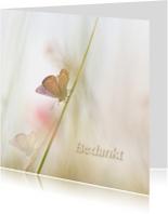 Bedankkaart vlinders-vierkant