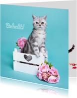 Bedankt - Kitten met bloemen