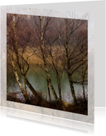 Condoleancekaarten - Berkenbomen voor waterkanaal