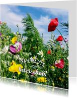 beterschap bloemen I -LB