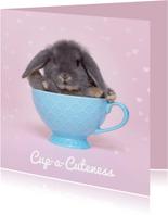 Beterschap - Cup a Cuteness