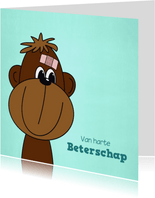 Beterschap kind lief aapje met een pleister