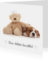Beterschap - Puppy met knuffel