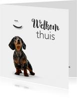 Beterschap Welkom thuiskaartje met een lief hondje