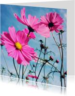 Beterschapskaart bloemen - LB1