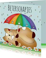 Beterschapskaart kat in de regen(boog) - Sk