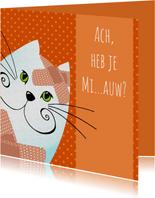Beterschapskaart Kat met pleister