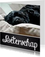 Beterschapskaart slapende hond