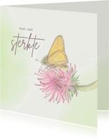 Beterschapskaart - Vlinder op klaverbloem