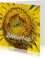 beterschapskaart zonnebloem - LB
