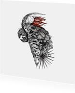 Bijzonder kaartje met Kaketoe illustratie zwart-wit