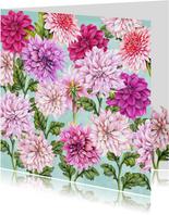 Bloemen dahlia