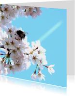 Bloemenkaart Bloesem Prunus 2