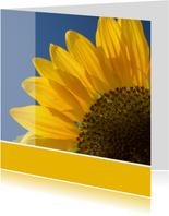 Bloemenkaart grote foto zonnebloem