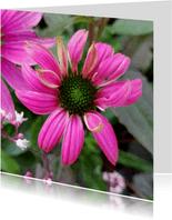 Bloemenkaart - Zonnehoed speciaal voor jou