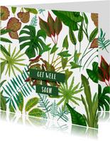 Botanische beterschapskaart