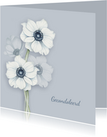Condoleance witte anemonen