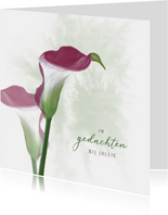 Condoleancekaart donkerrode Calla