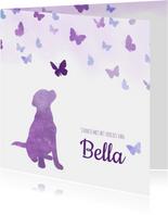 Condoleancekaart Huisdier hond met vlinders