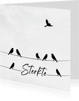 Condoleancekaart met een silhouette van vogels