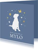 Condoleancekaart met hond, vlinder, hartjes en voetstapjes
