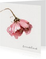 Condoleancekaart met waterverf Cosmea bloem schilderij