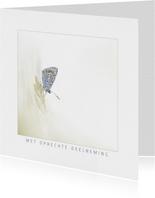 Condoleancekaart vlinder op grashalm