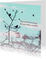 Condoleancekaart vogels boom