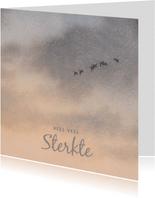 Condoleancekaart warmgrijze lucht met wegvliegende vogels