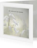 Condoleancekaart witte boshyacinten
