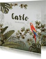 Dankeskarte zur Geburt Dschungel, Papagei Foto innen