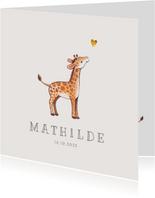 Danksagung zur Geburt kleine Giraffe Foto Innenseite