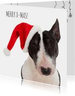Dieren kerstkaart - Hond - Bull