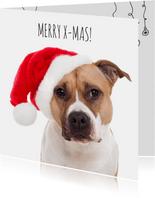 Dieren kerstkaart - Hond - Merry