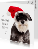 Dieren kerstkaart - Hond - Paws