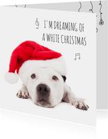 Dieren kerstkaart - Hond - Staff