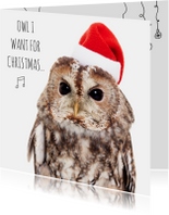 Dieren Kerstkaart - Uil - Love