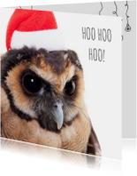 Dieren Kerstkaart - Uil - Santa