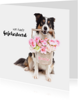 Dieren verjaardagskaart - Border Collie Bloemen