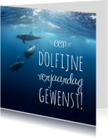 Dierenkaart  dolfijn verjaardag