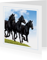 Dierenkaart galopperende paarden