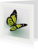 Dierenkaart gele vlinder