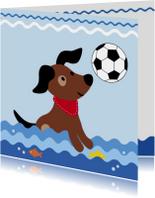 Dierenkaart-Hondje vangt bal-HK
