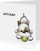 Dierenkaart Odey, Let's play!